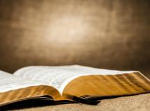 liturgia nadzis